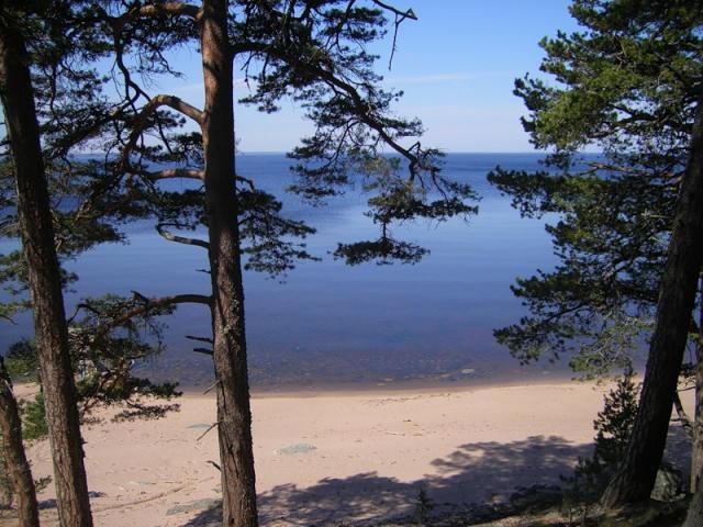 Китайские инвесторы строят на Байкале завод по розливу  воды