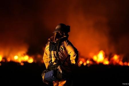 Три человека погибли во время пожара в Тверской области