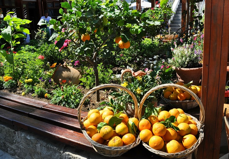 Греция просит Россию разрешить импорт фруктов