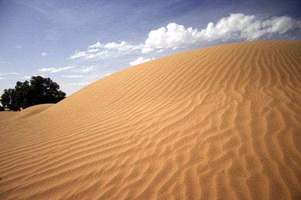 Ученые утверждают, что пустыня Сахара стала более влажной