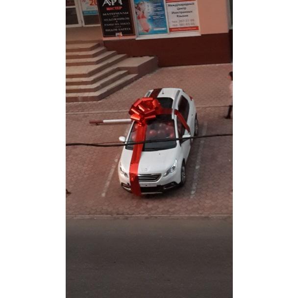 Подарок моторолы жене купить розы мелким оптом 2012