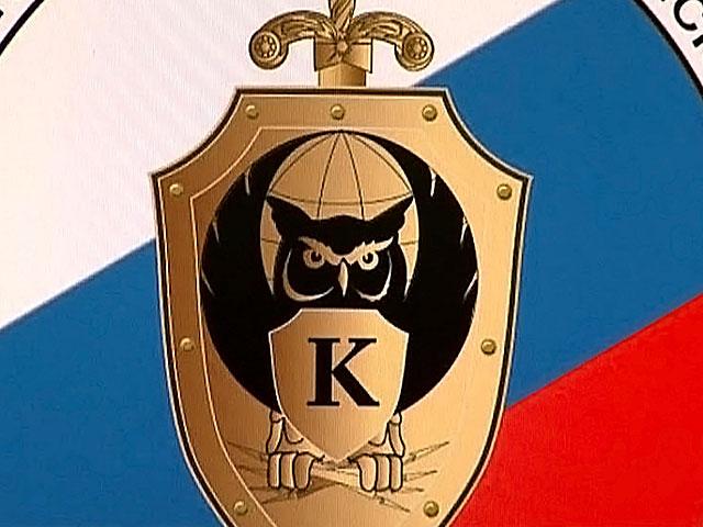 В России создается киберполиция