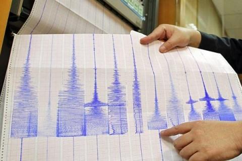Землетрясение зафиксировали под Новосибирском