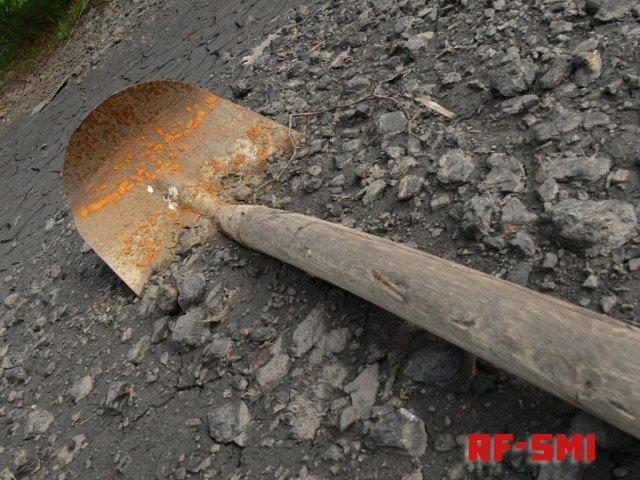 Председатель СНТ убил дачницу лопатой из-за пропавших котят