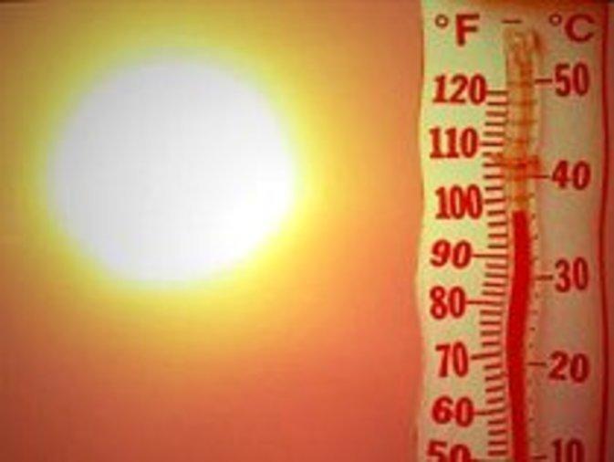 В Германии жара побила температурный рекорд 130-летней давности