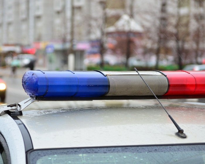 Вооруженная группа грабителей совершила налет на овощебазу в Москве