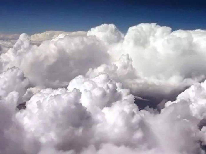 Половина облаков Земли создана благодаря дыханию планктона в океане.