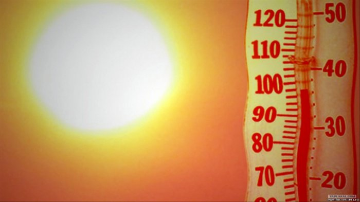В Арктике зафиксировали 35 градусов жары