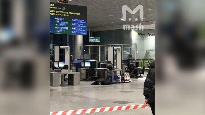 Что же произошло прошлой ночью в аэропорту Домодедово?