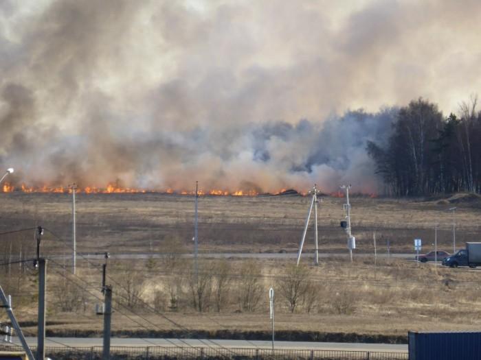 В Тверской обл. во время тушения горящей травы погиб 24-летний доброволец