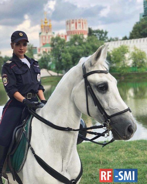 Ночной разговор с белой лошадью в парке