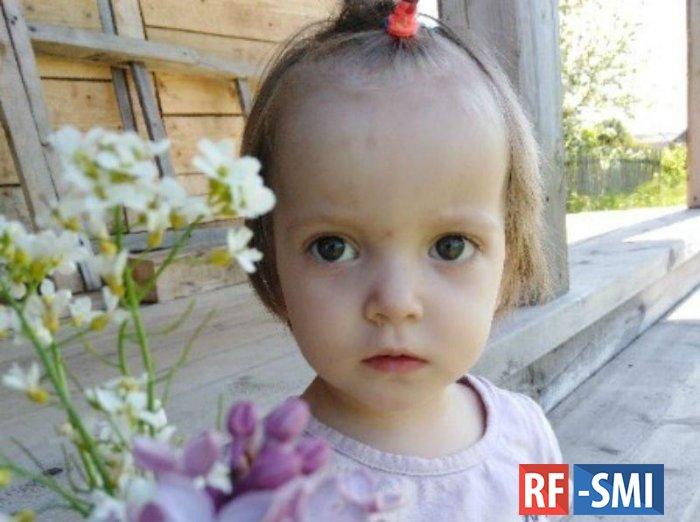 В Вологодской области нашли 2-летнюю девочку, пропавшую два дня назад.