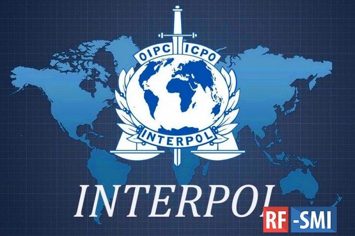 Политическое дело: за что Интерпол задержал Богачеву и почему ее отпустили