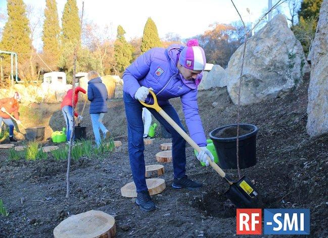 Артековские «звезды» подарили любимому лагерю черешневый сад