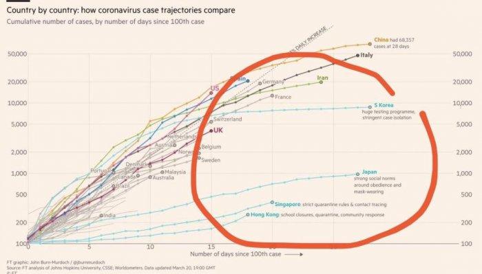 Страны, которые строго соблюдают карантинные меры пострадали меньше всех