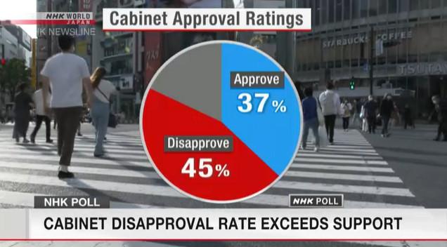 Уровень неодобрения Кабинета министров Японии увеличился до 45%
