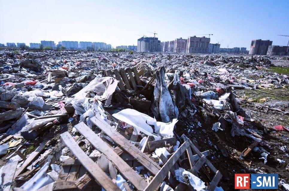 Экологические организации Петербурга продолжают борьбу с несанкционированными свалками