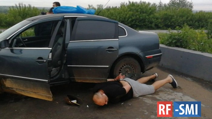 """В Тульской области цыгане решили продать """"подлинник"""" Шишкина"""