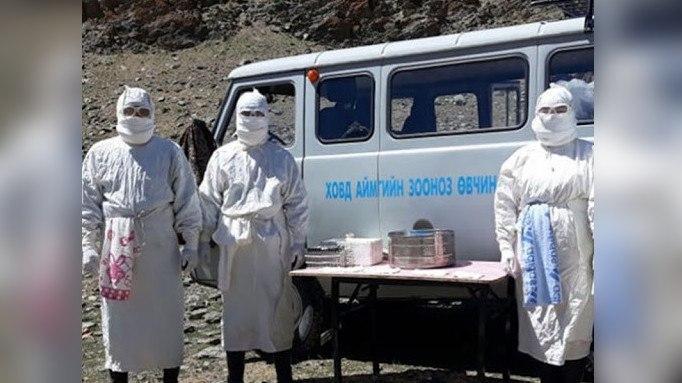 СМИ сообщили о новом случае бубонной чумы в Монголии