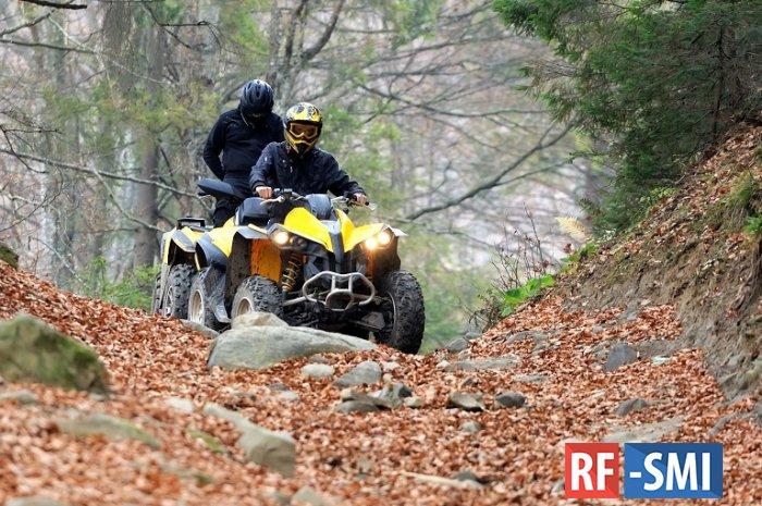 В горах Сочи пропала группа туристов из 11 человек