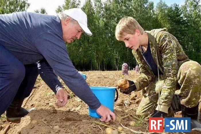 Сын Лукашенко Коля будет учиться в Москве