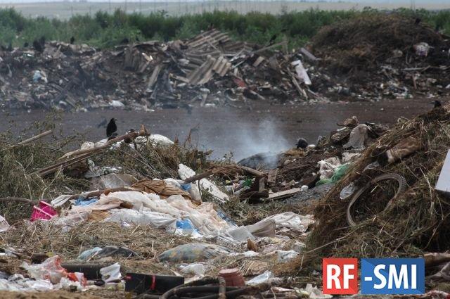 Административная и уголовная ответственность грозит лицам, загрязнявшим землю в Угольной гавани