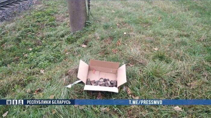 На железной дороге в Минской области нашли муляж бомбы.