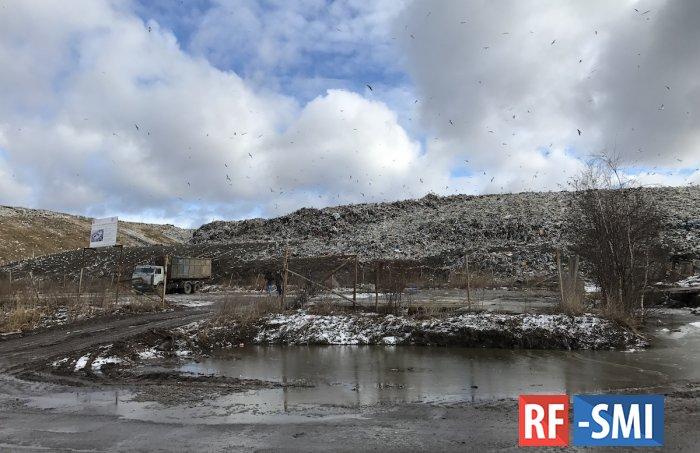Дефицит инфраструктуры, мало зелени и загазованность: горожане рассказали о жизни на Парнасе