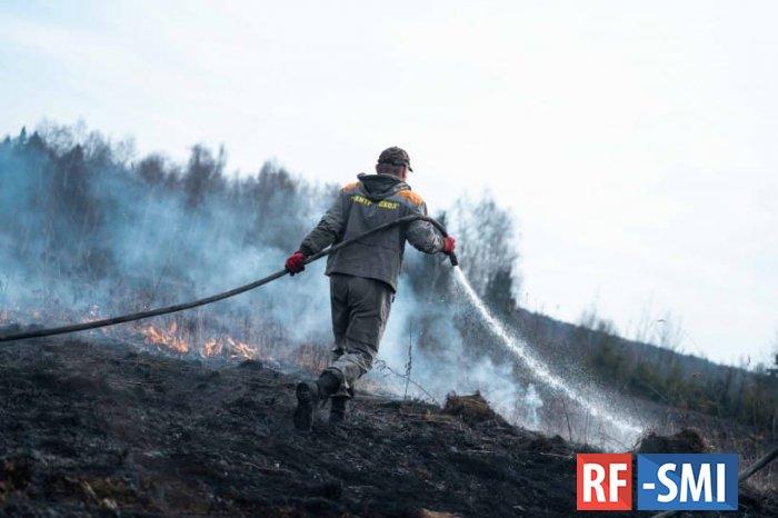 14 лесных пожаров потушили в Солнечногорске за сезон