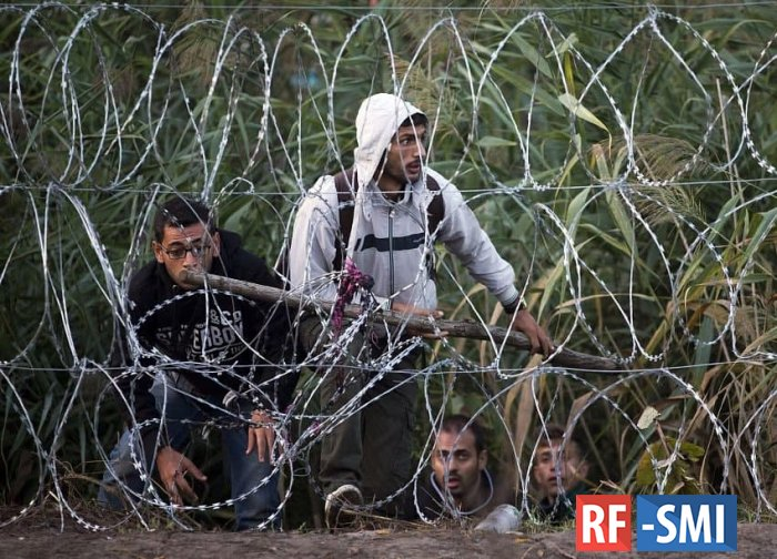 Власти Литвы ограничили права мигрантов