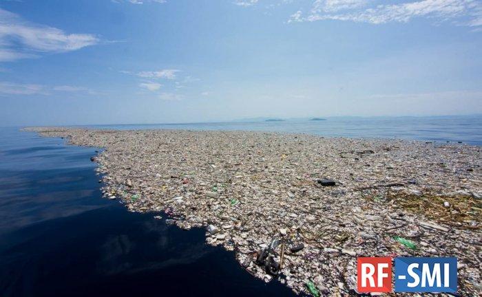 1,6 миллиарда одноразовых масок попало в океан в 2020 году